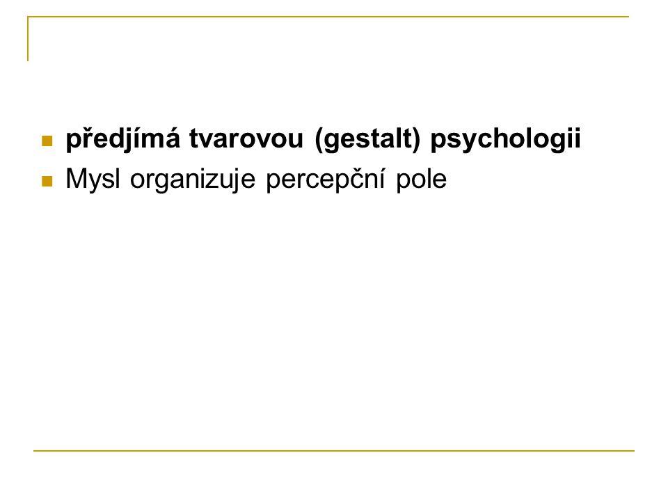 předjímá tvarovou (gestalt) psychologii