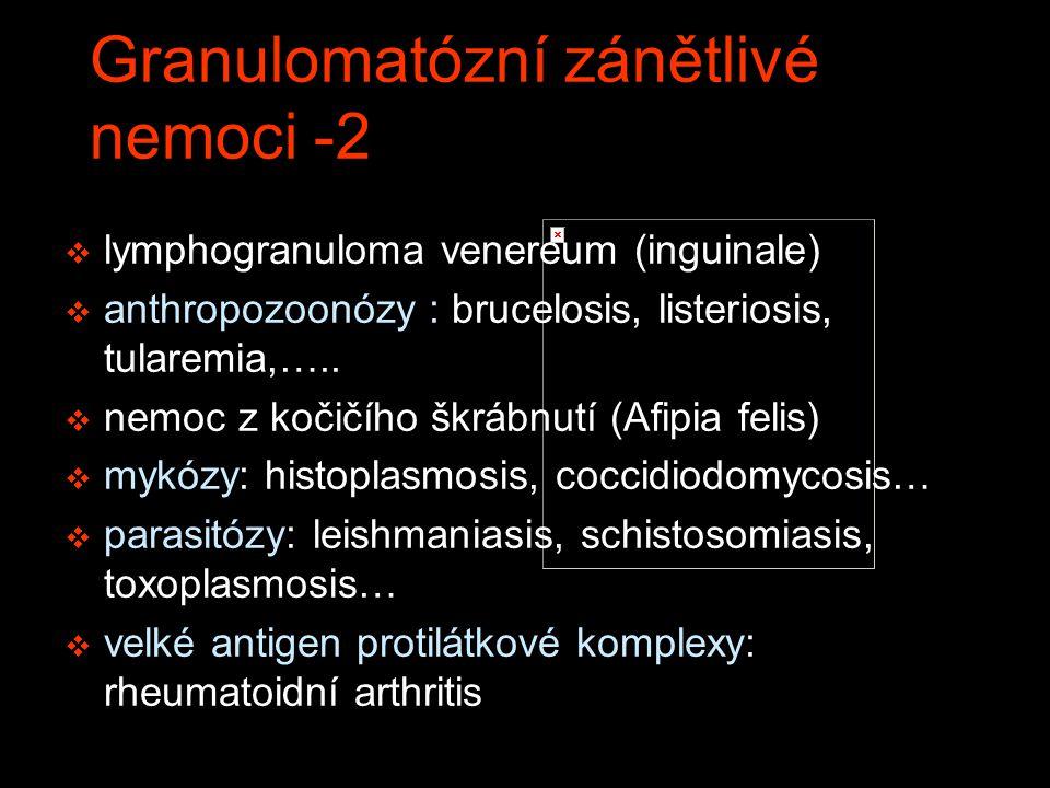 Granulomatózní zánětlivé nemoci -2