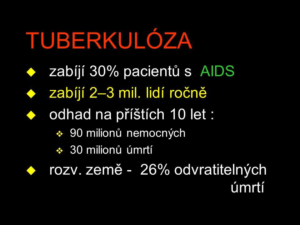 TUBERKULÓZA zabíjí 30% pacientů s AIDS zabíjí 2–3 mil. lidí ročně