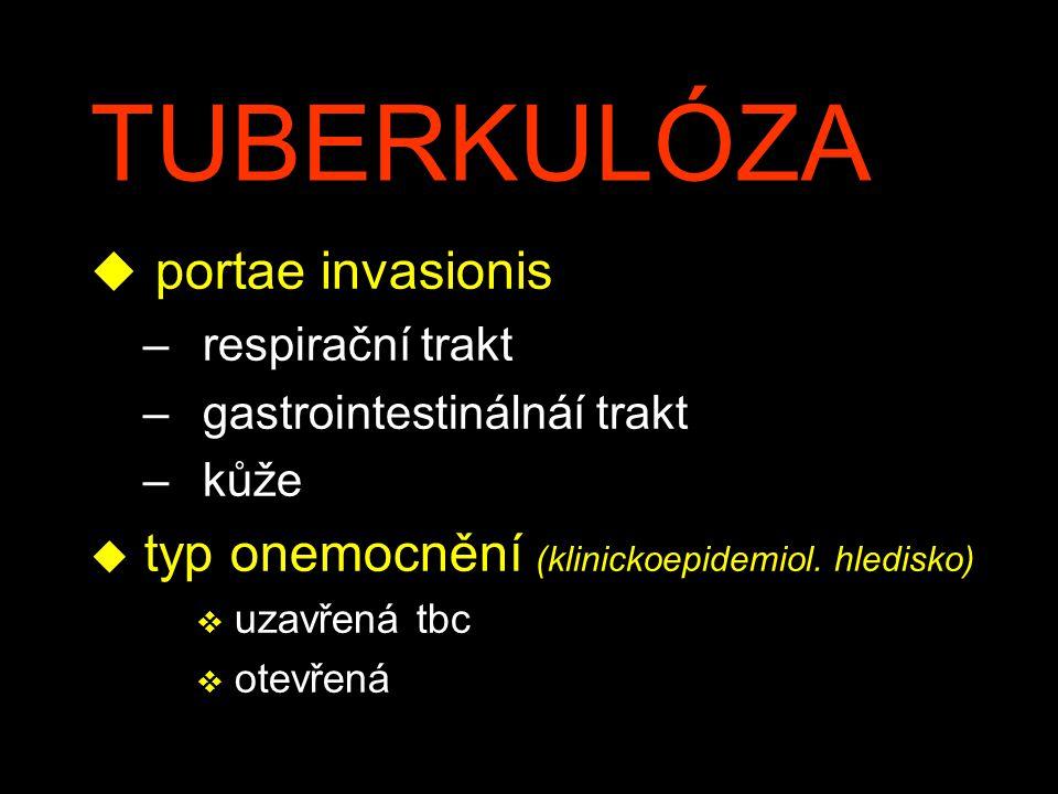 TUBERKULÓZA portae invasionis
