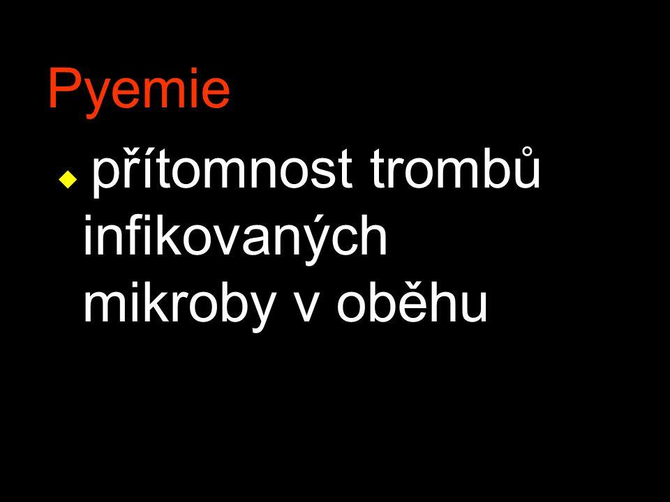 Pyemie přítomnost trombů infikovaných mikroby v oběhu