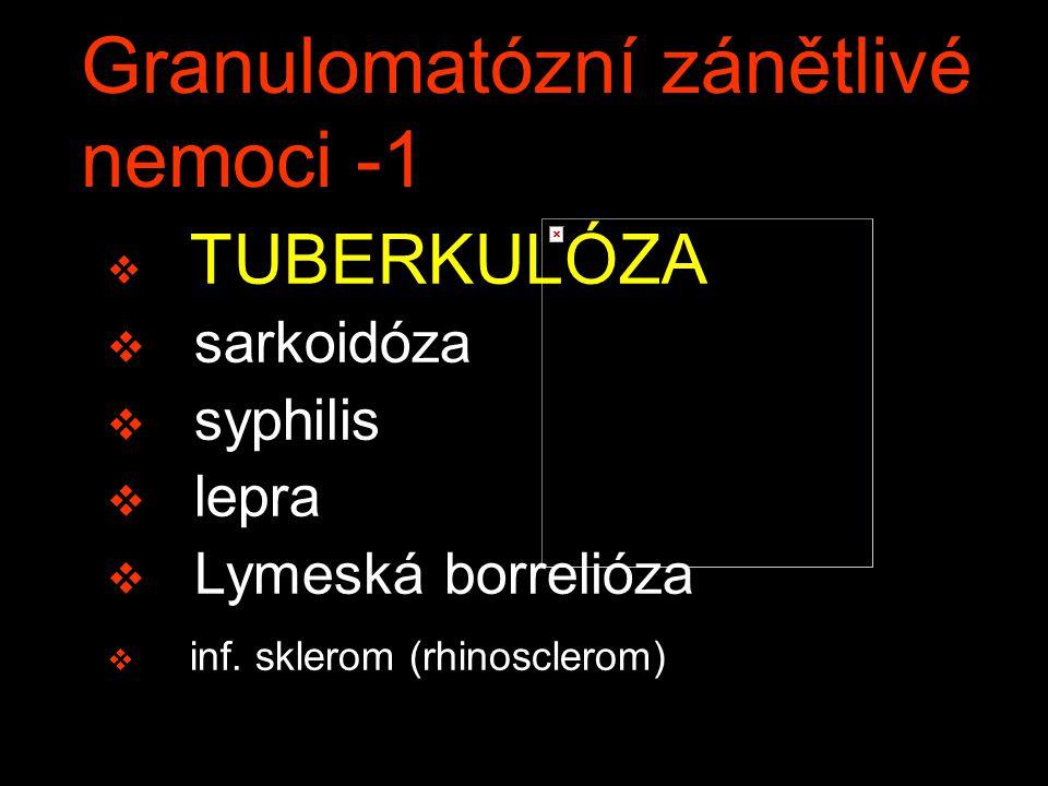Granulomatózní zánětlivé nemoci -1