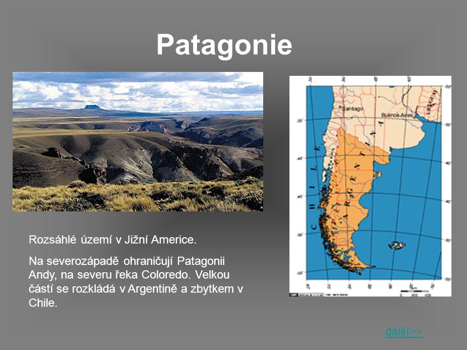 Patagonie Rozsáhlé území v Jižní Americe.