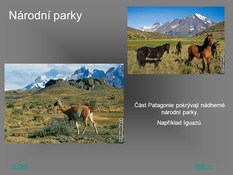Část Patagonie pokrývají nádherné národní parky.
