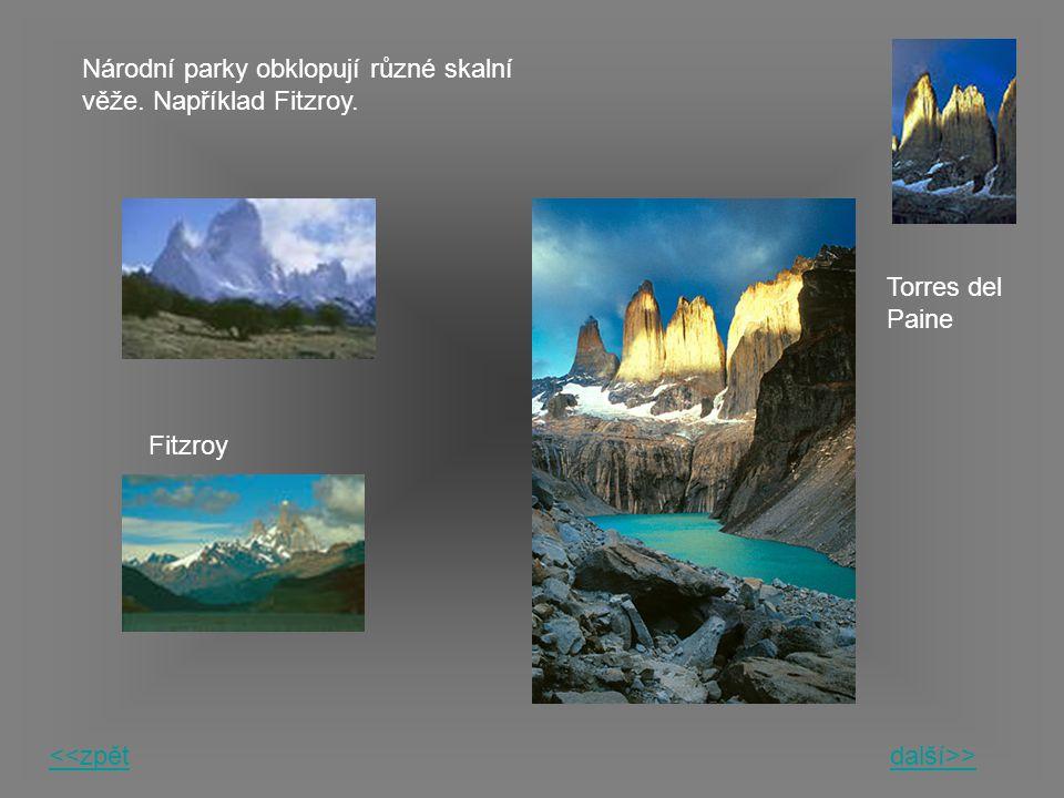 Národní parky obklopují různé skalní věže. Například Fitzroy.