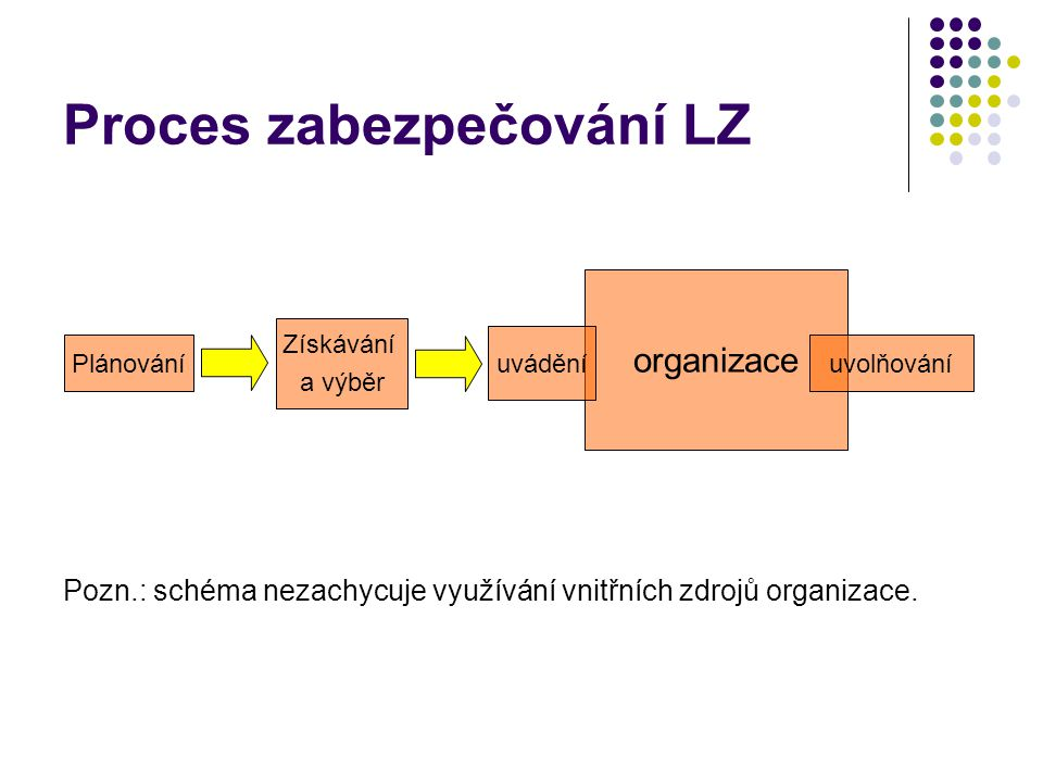 Proces zabezpečování LZ