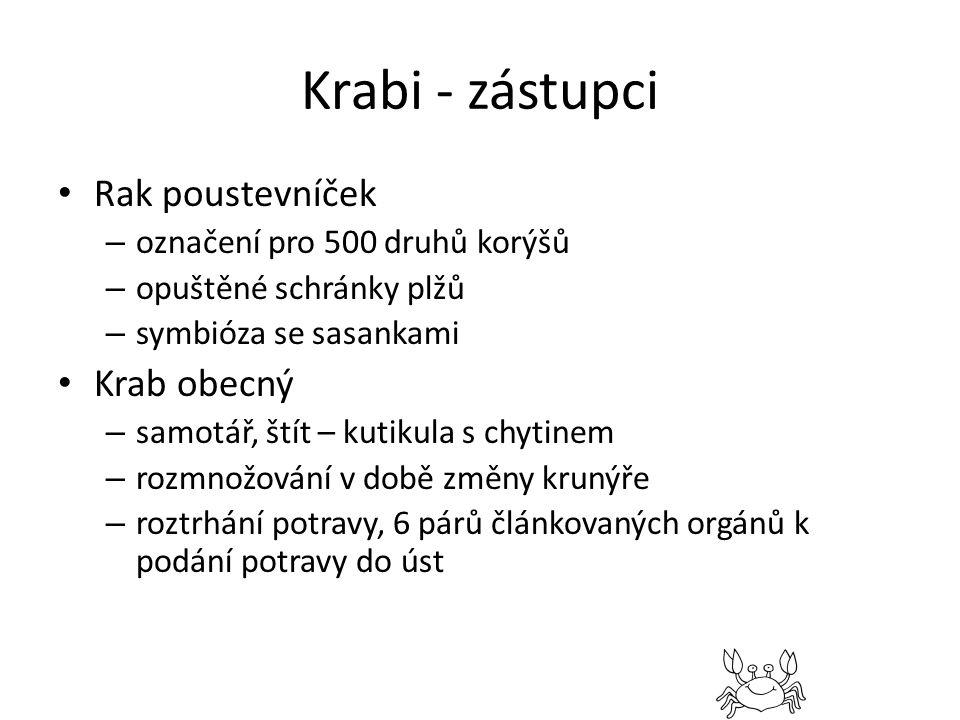 Krabi - zástupci Rak poustevníček Krab obecný