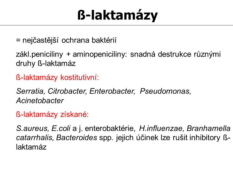 ß-laktamázy = nejčastější ochrana baktérií