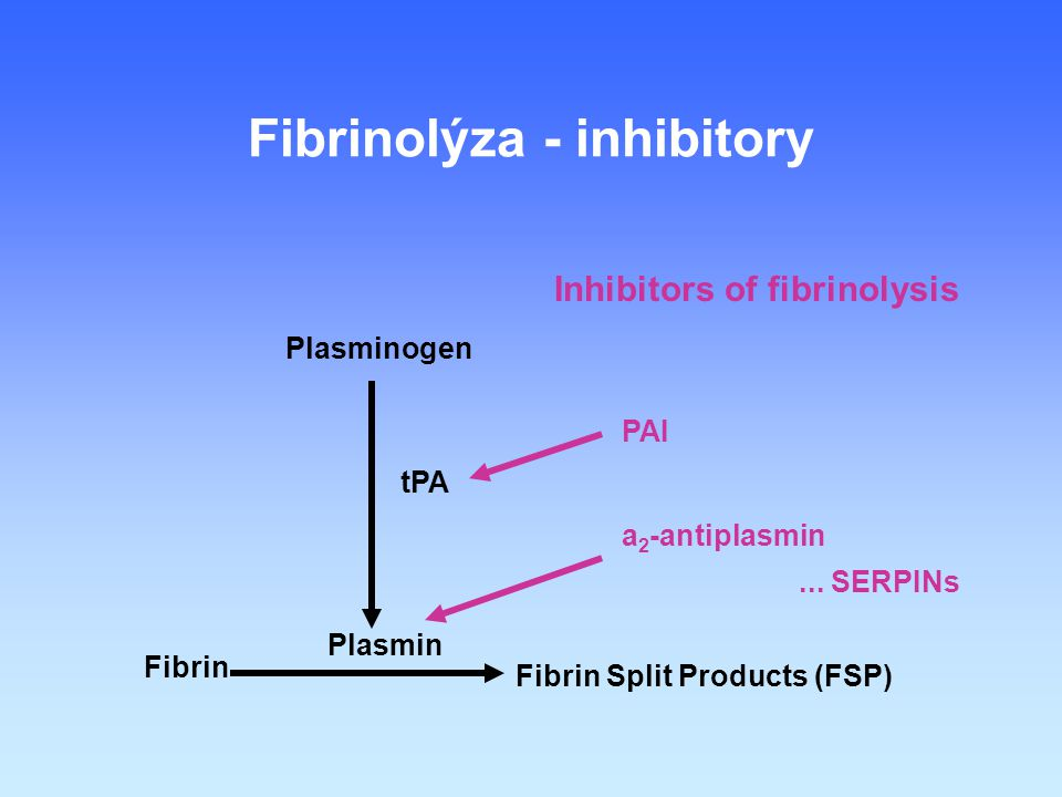 Fibrinolýza - inhibitory Inhibitors of fibrinolysis