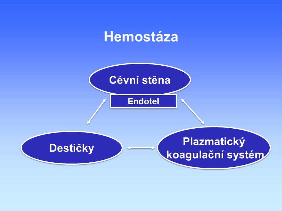 Hemostáza Cévní stěna Endotel Plazmatický koagulační systém Destičky