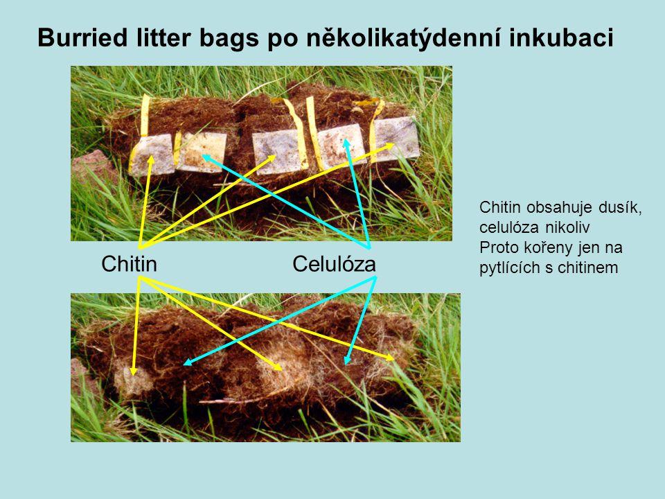 Burried litter bags po několikatýdenní inkubaci
