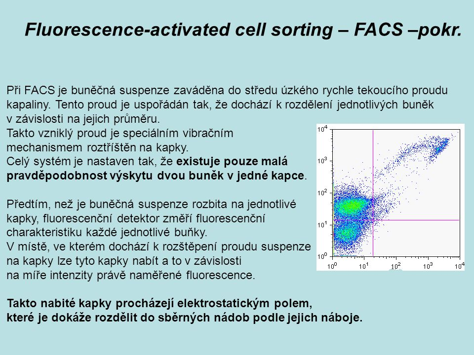 Fluorescence-activated cell sorting – FACS –pokr.
