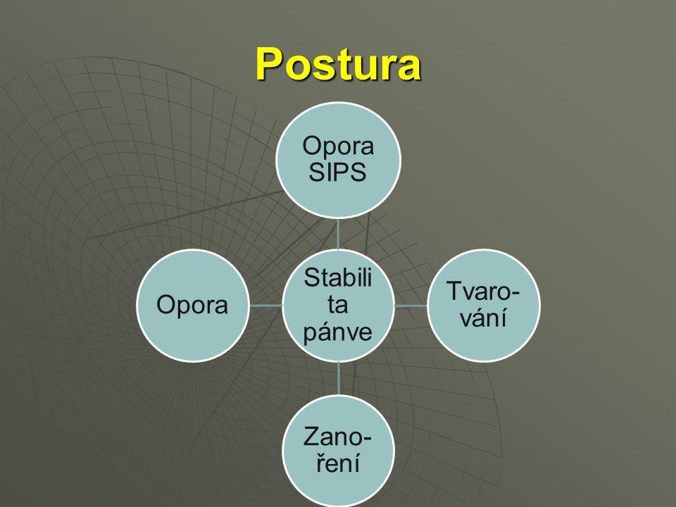 Postura Stabilita pánve Opora SIPS Tvaro-vání Zano-ření Opora