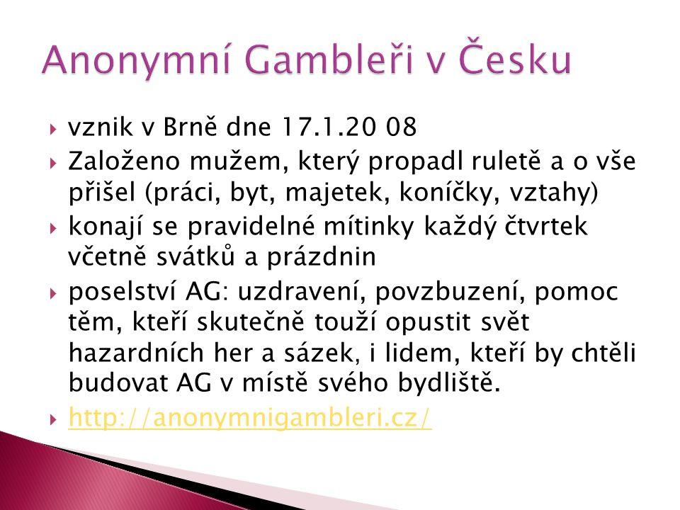 Anonymní Gambleři v Česku