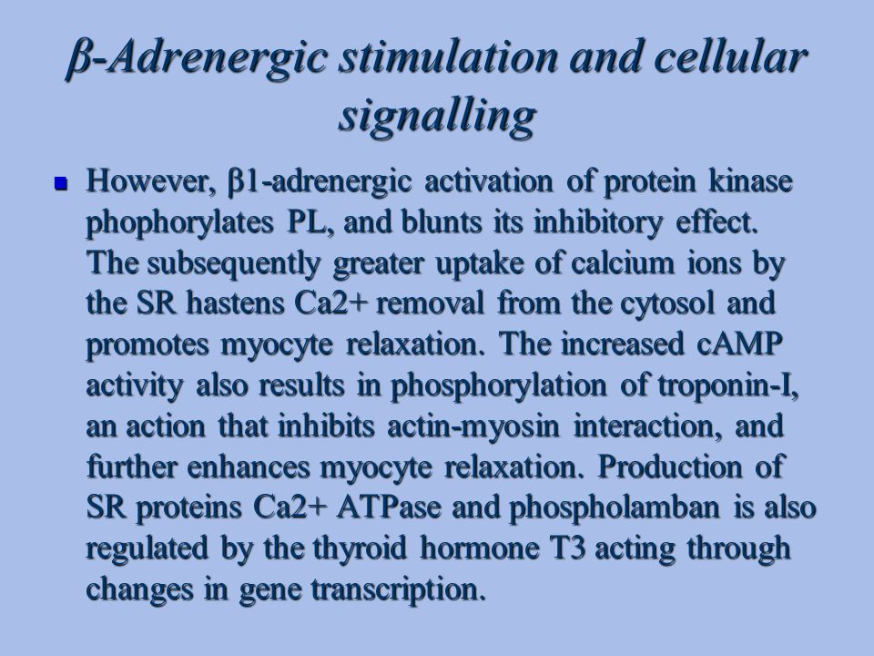 β-Adrenergic stimulation and cellular signalling