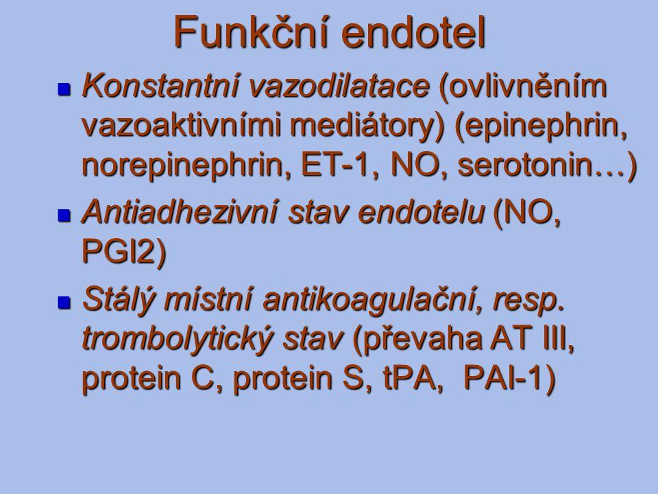 Funkční endotel Konstantní vazodilatace (ovlivněním vazoaktivními mediátory) (epinephrin, norepinephrin, ET-1, NO, serotonin…)