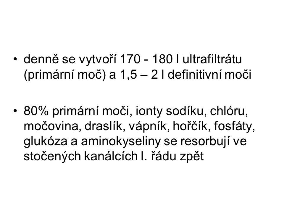 denně se vytvoří 170 - 180 l ultrafiltrátu (primární moč) a 1,5 – 2 l definitivní moči