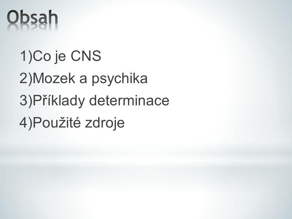 Obsah 1)Co je CNS 2)Mozek a psychika 3)Příklady determinace 4)Použité zdroje