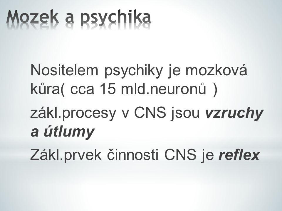 Mozek a psychika Nositelem psychiky je mozková kůra( cca 15 mld.neuronů ) zákl.procesy v CNS jsou vzruchy a útlumy.