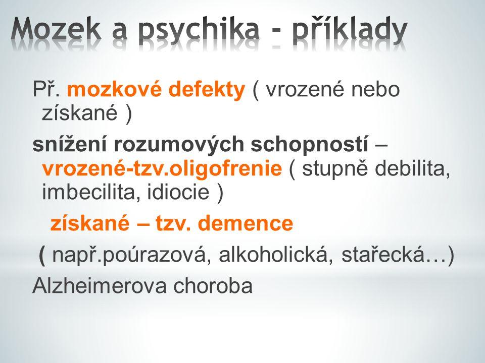 Mozek a psychika - příklady