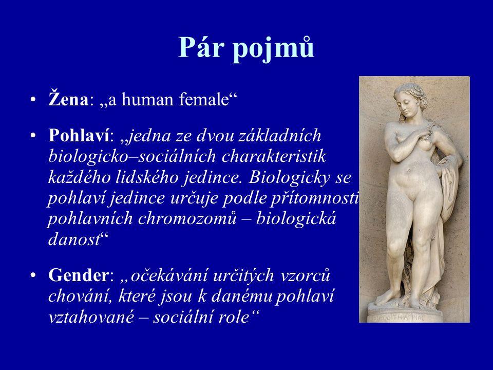 "Pár pojmů Žena: ""a human female"