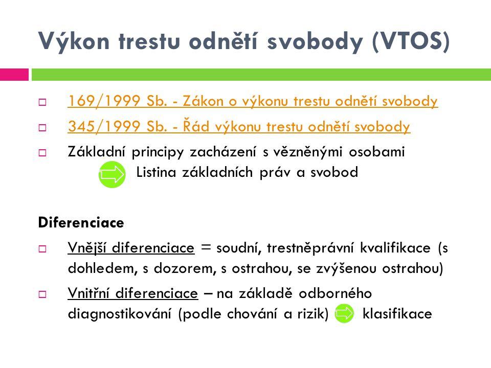 Výkon trestu odnětí svobody (VTOS)