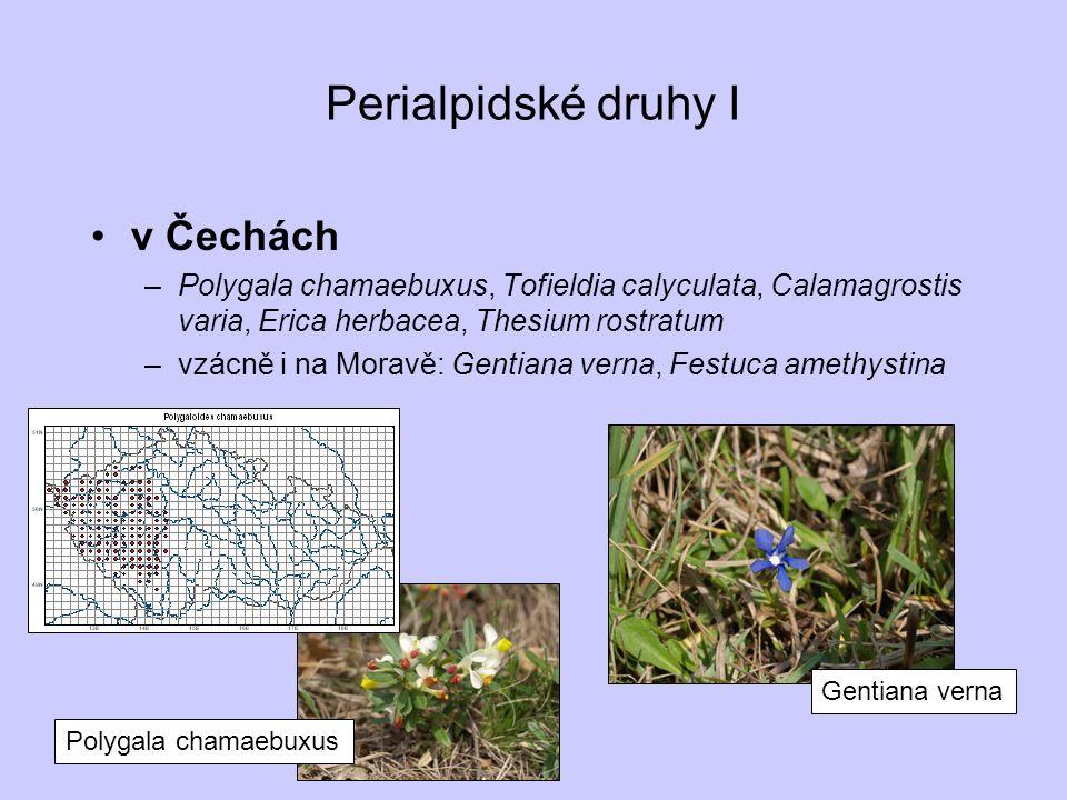 Perialpidské druhy I v Čechách