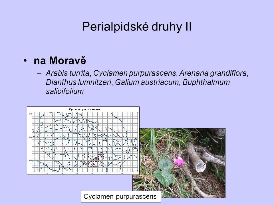 Perialpidské druhy II na Moravě