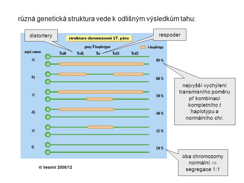 oba chromozomy normální  segregace 1:1