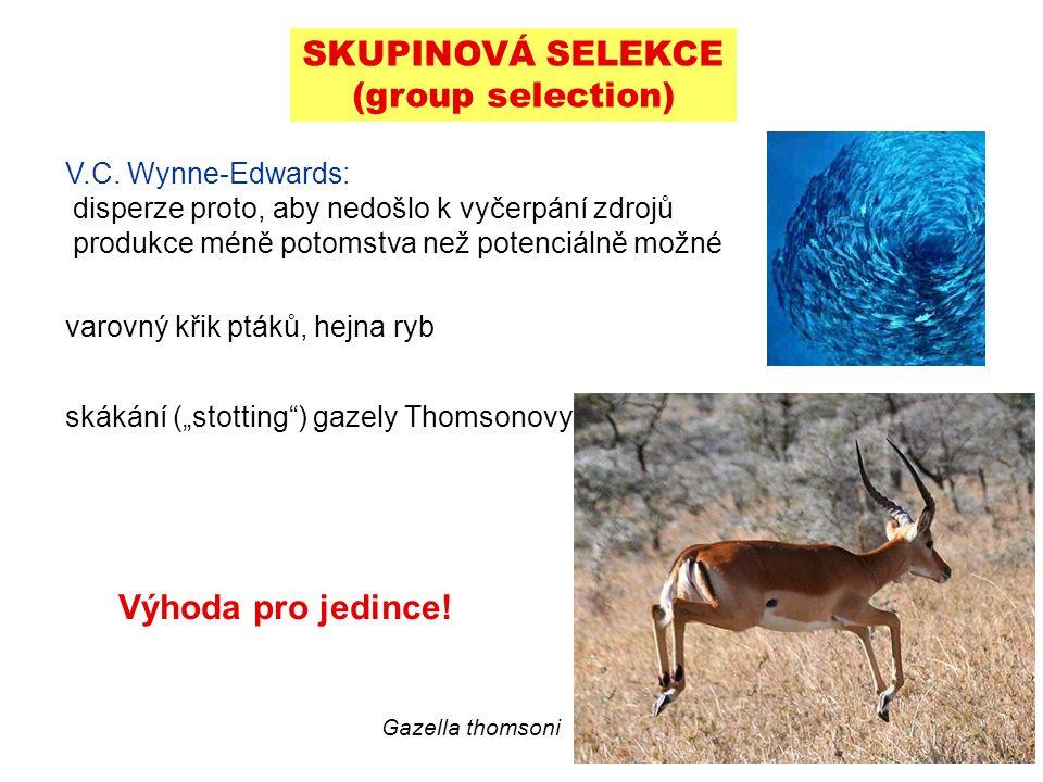 SKUPINOVÁ SELEKCE (group selection)