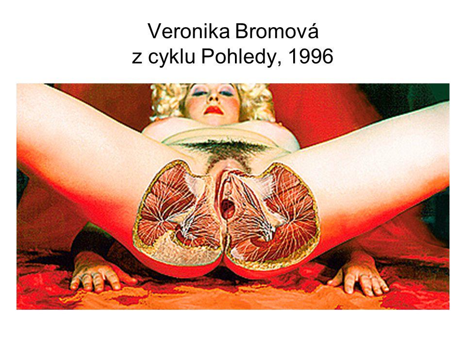Veronika Bromová z cyklu Pohledy, 1996