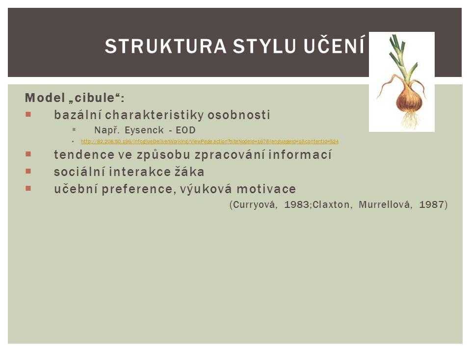 """Struktura stylu učení Model """"cibule :"""