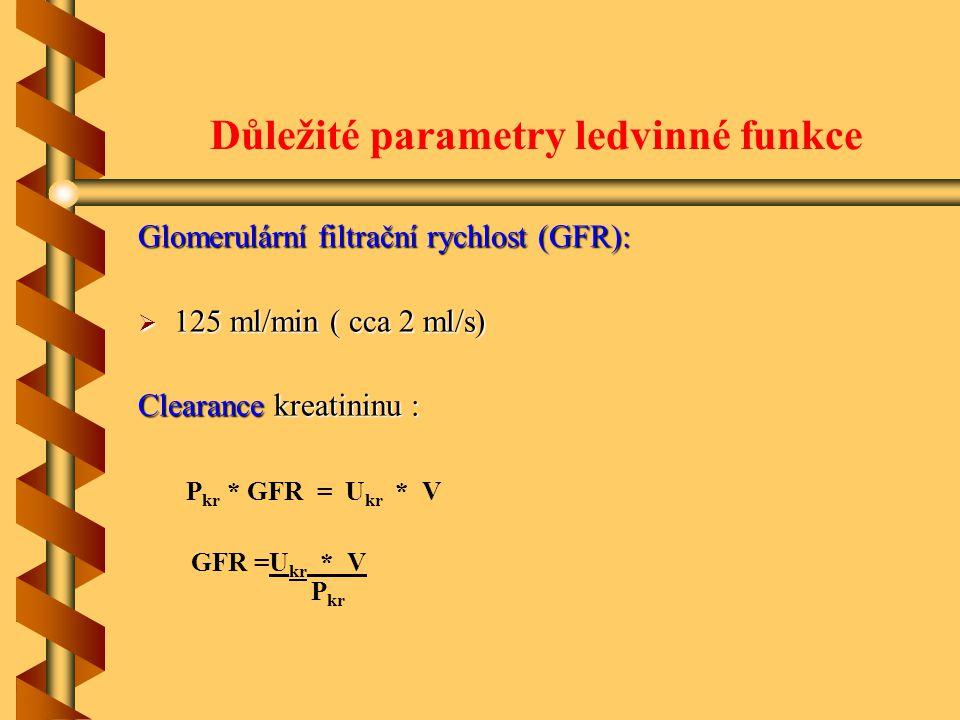 Důležité parametry ledvinné funkce