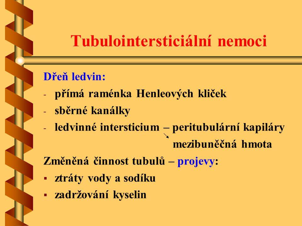 Tubulointersticiální nemoci
