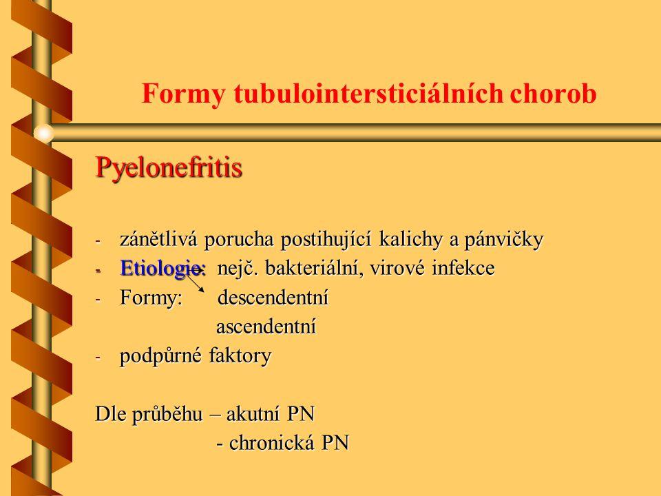 Formy tubulointersticiálních chorob