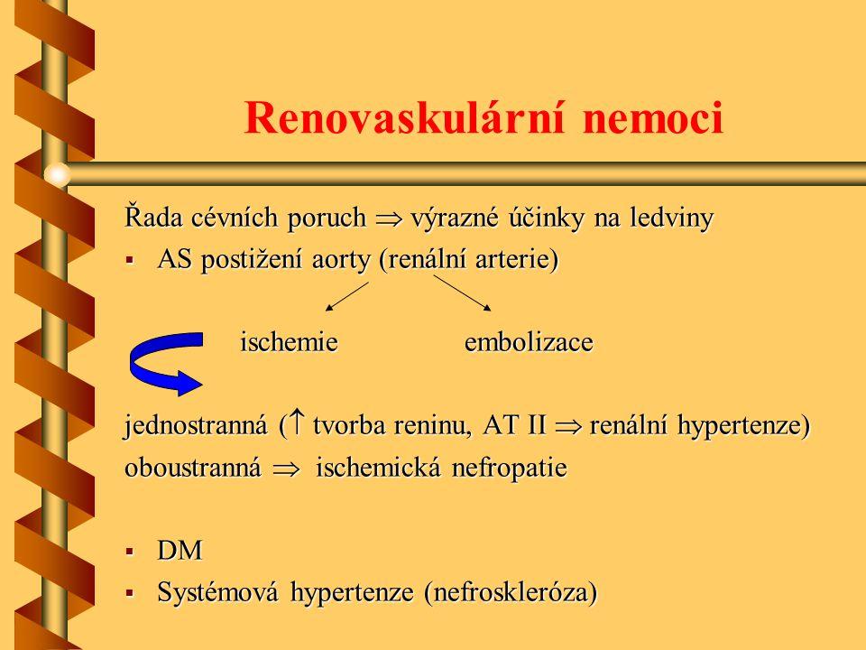 Renovaskulární nemoci