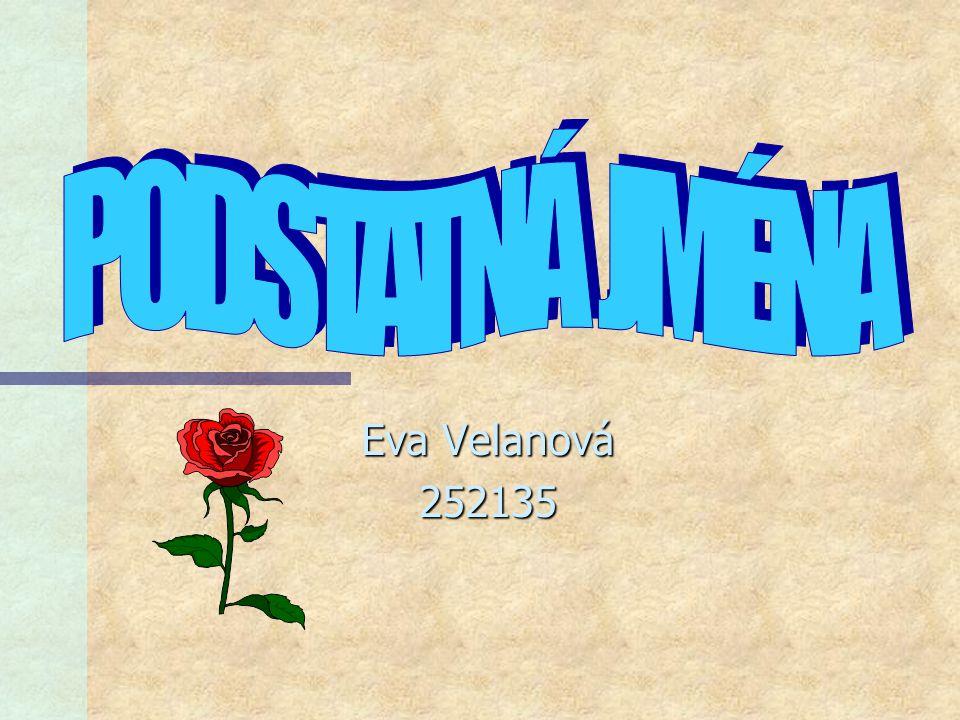PODSTATNÁ JMÉNA Eva Velanová 252135