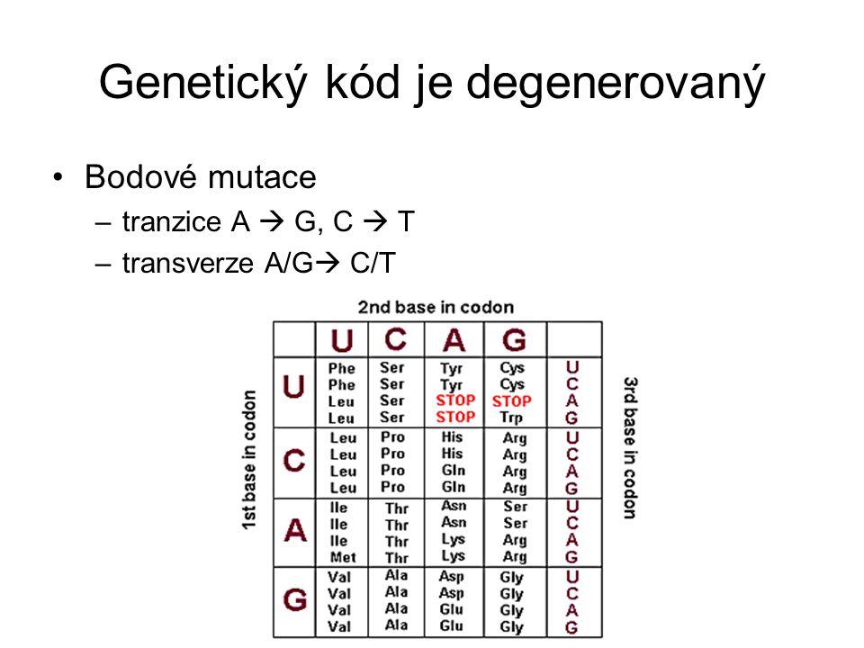 Genetický kód je degenerovaný