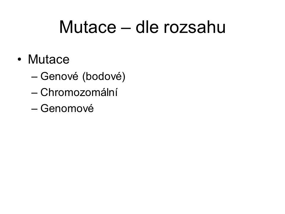 Mutace – dle rozsahu Mutace Genové (bodové) Chromozomální Genomové