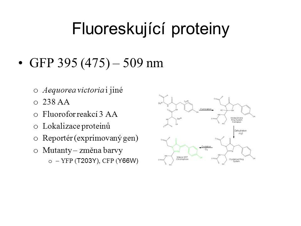 Fluoreskující proteiny