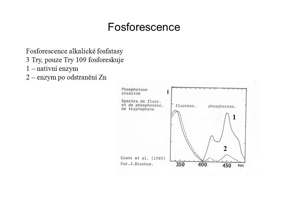 Fosforescence Fosforescence alkalické fosfatasy