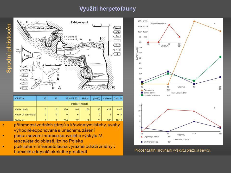 Využití herpetofauny Spodní pleistocén