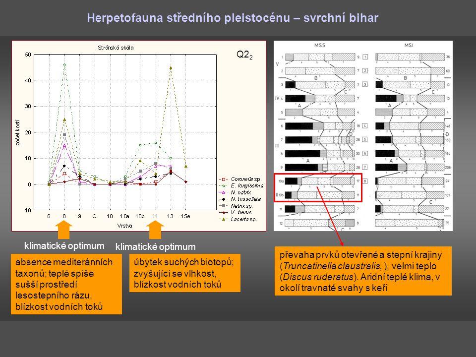 Herpetofauna středního pleistocénu – svrchní bihar