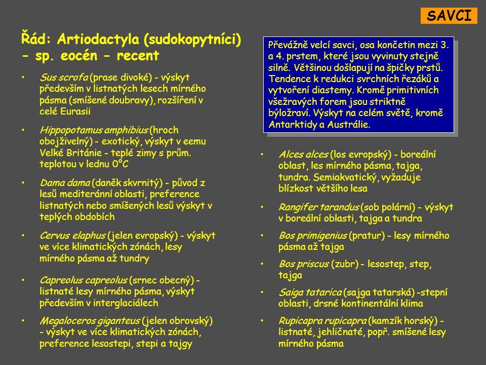 Řád: Artiodactyla (sudokopytníci) - sp. eocén - recent