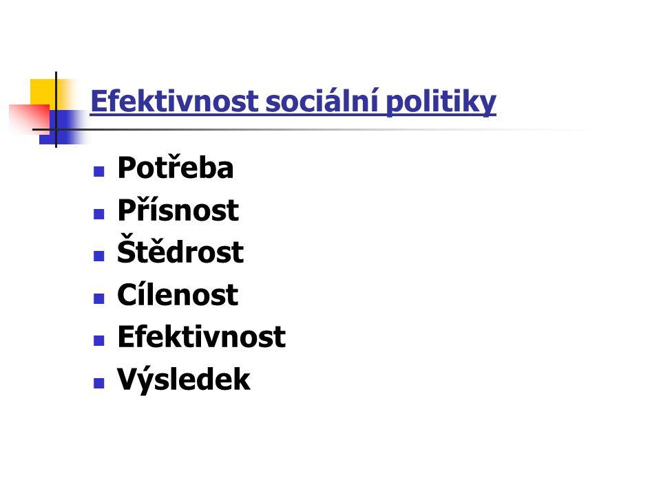 Efektivnost sociální politiky