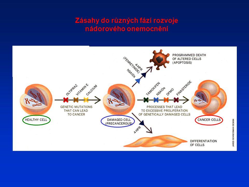 Zásahy do různých fází rozvoje nádorového onemocnění