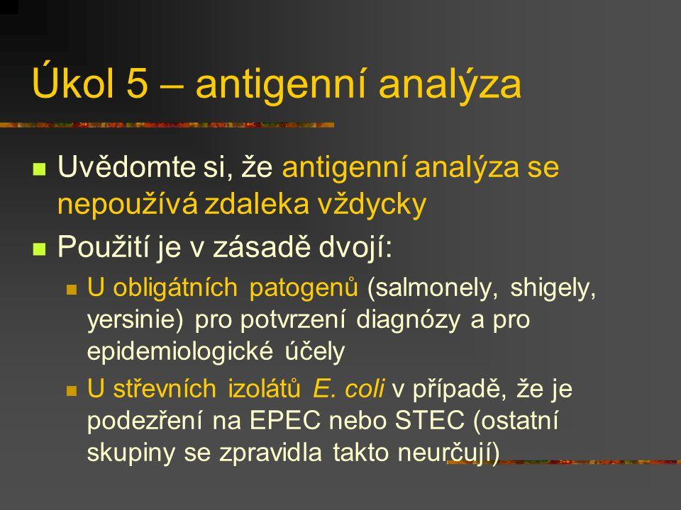 Úkol 5 – antigenní analýza