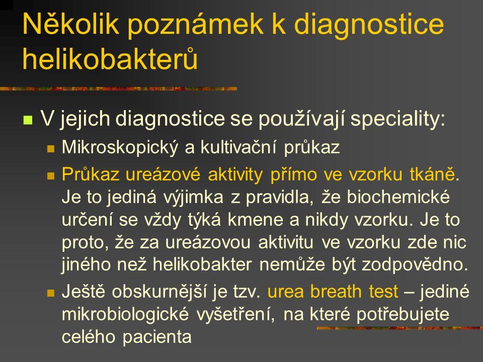 Několik poznámek k diagnostice helikobakterů