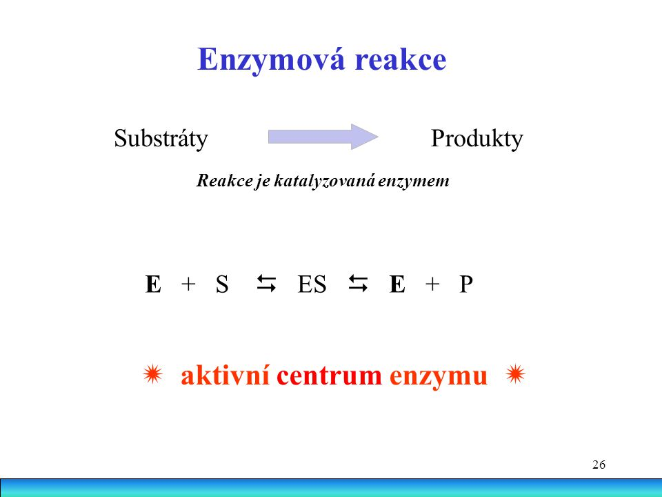 Enzymová reakce  aktivní centrum enzymu  Substráty Produkty