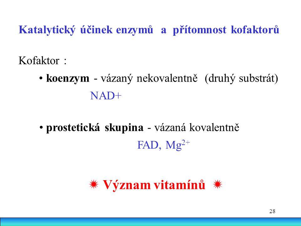  Význam vitamínů  Katalytický účinek enzymů a přítomnost kofaktorů